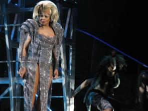 Tina Turner - The O2, Dublin - April 11, 2009 - 057