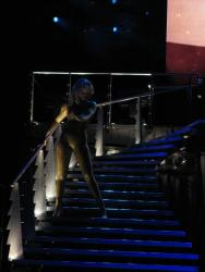 Tina Turner - The O2, Dublin - April 11, 2009 - 089