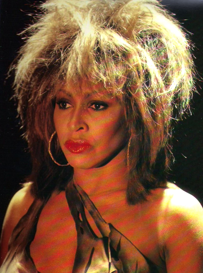tina turner � private dancer tour book � tina turner blog