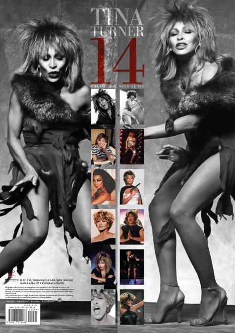 Tina Turner 2014 Calendar