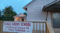 Tina Turner - Flagg Grove School- 2014