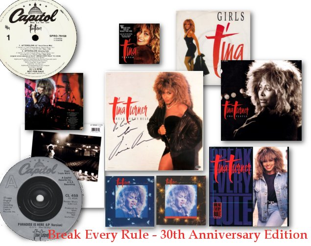 Tina Turner - Break Every Rule - 12 and 7 Inch Releases
