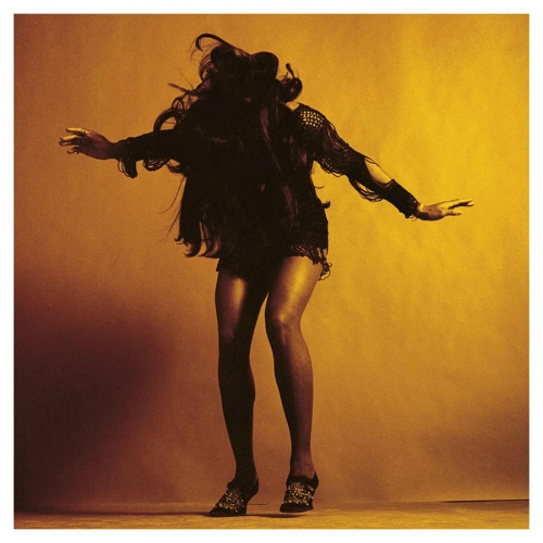 tina turner - the last shadow puppet- everything you've come to expect- 2016