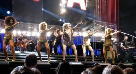 Tina Turner live at the O2 - Dublin - April 2009.jpg