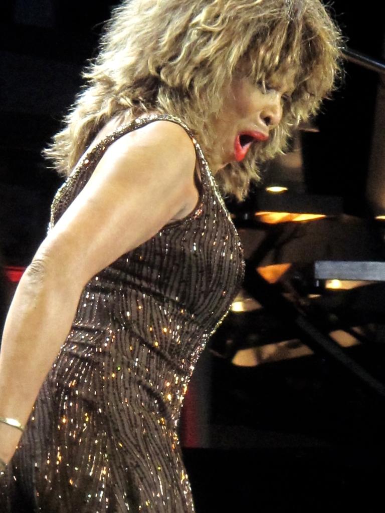 Tina Turner Live 2009 .jpg