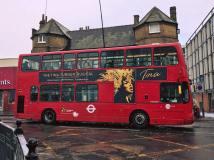 Tina Turner - TINA The Musical - London 2018 - Promo 2