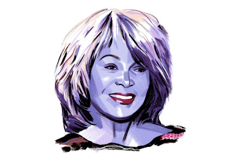 tina turner drawing