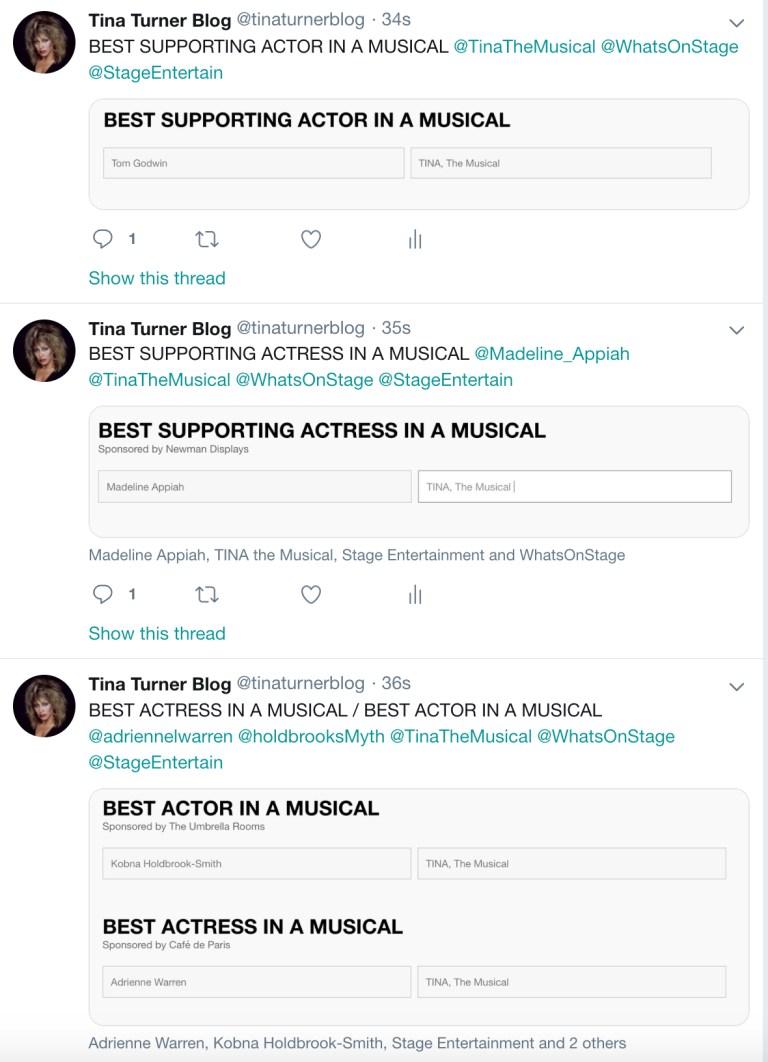TINA The Musical Stage Awards Musical 2019 - 2